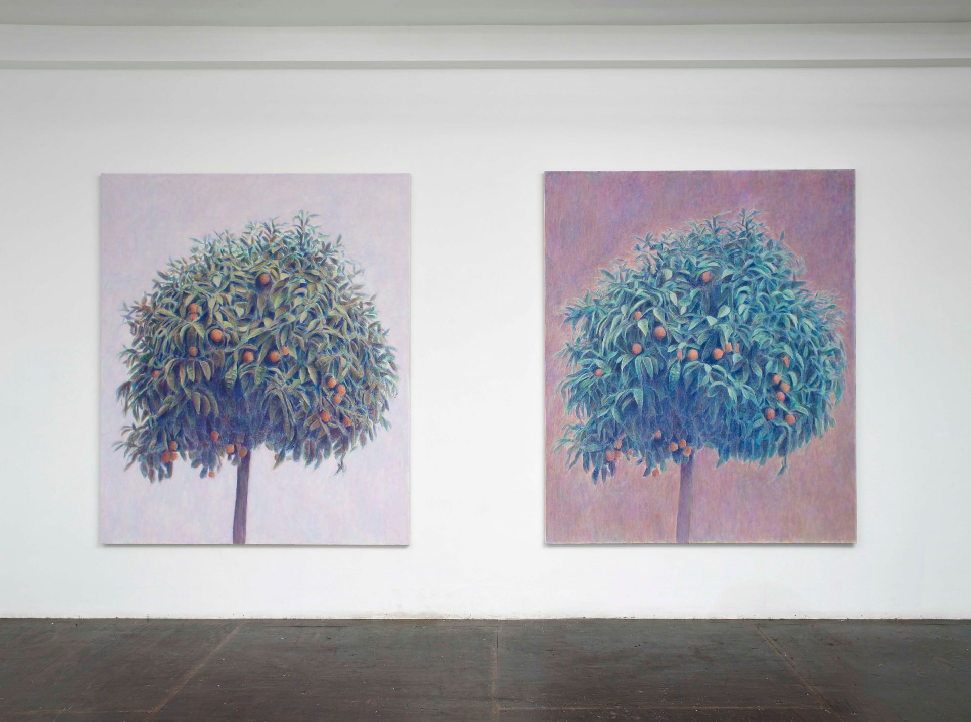 Bruno Pacheco: Three Orange Trees, A Box and Some Gloves, 2010