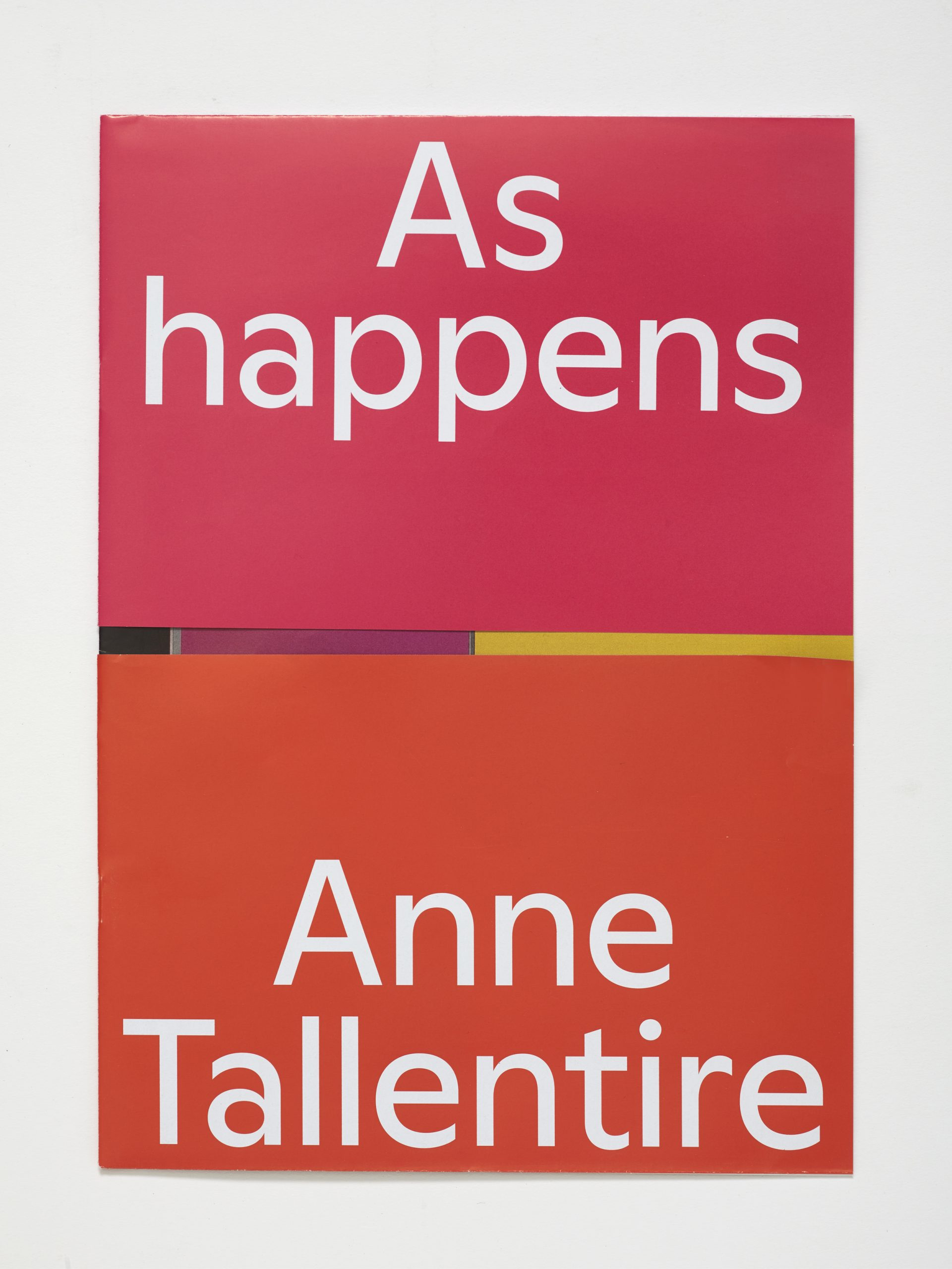 Hollybush Issue 8: Anne Tallentire