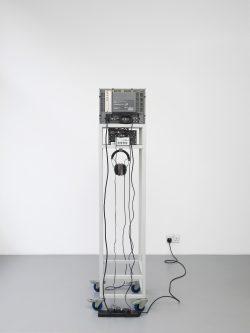 PC21158 Compression Fern Face (2)